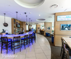 Juicy Blue at the Four Points by Sheraton Tallahassee Downtown