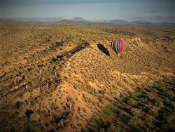 Arizona Balloons, Inc.