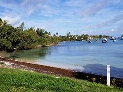 Mangrove Bay Beach