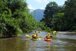 Jungle Kayak