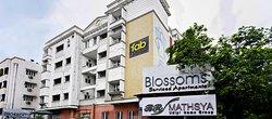FabHotel Blossoms T Nagar