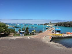Malecon de Puerto Ayora