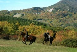 ‪Prategiano - Horse Riding Holiday Tuscany‬