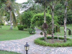 Un particolare del giardino.
