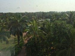 Definitely the best 5 star hotel in Kochi