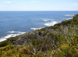 Cape Naturaliste Walking Trails