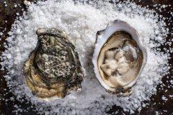 Selfish Bistro - wine and seafood