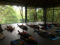 Sunny Yoga