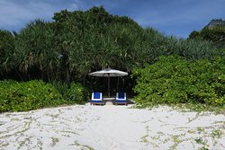 our spot on the beach; casita hidden in trees behind