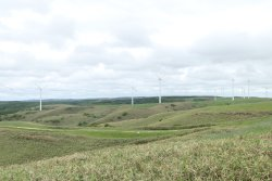 ‪Cape Soya Wind Farm‬