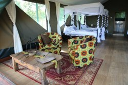 Ngorongoro Lodge & Campsite