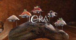 Tora México