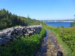 Murphy's Cove Lodge's Pond Trail