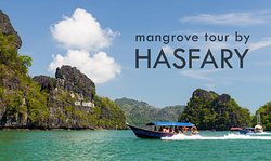 Langkawi Mangrove Tour by Hasfary Travel & Tours