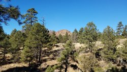 Picture Canyon Natural and Cultural Preserve