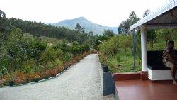 I will love to call it Eden Garden!!