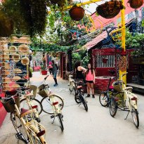 Bike Rental & Tours Havana