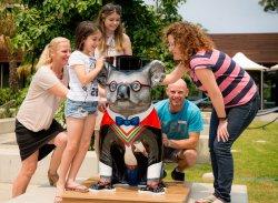 Hello Koalas Public Art Sculpture Trail