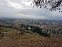 Passeggiata Col Molin – Colle di Dante – Col Roigo