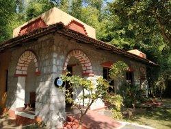 Jungle King Resorts