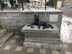 Monument-Moneybox to the Homeless Dog