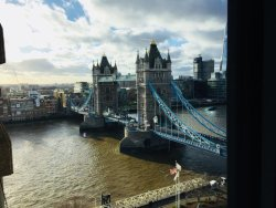 View from a conference room on the 12th floor!