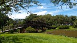 Timbó Botanical Garden