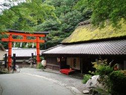 Kyoto Sagano Walk & Bamboo Forest