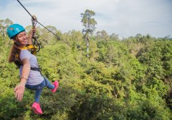 Flying Fox & Taman Petualangan Atas Pohon