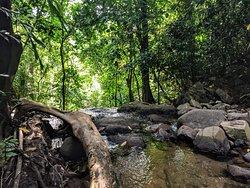 Tonsai waterfall upstream (dry season)