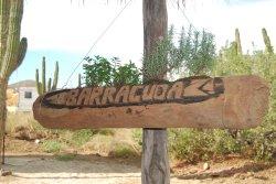 Barracuda Cantina