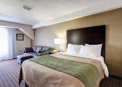 Comfort Inn South Windsor
