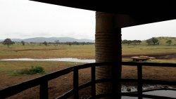 Karibu Kenya! Hospitality, good food and great location at one place.