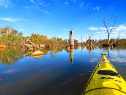 Murray River Adventures