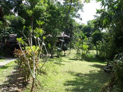Trip to Khao Sok
