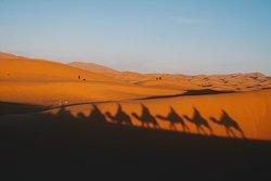 Desert Morocco Adventure