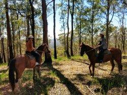 Bellrowan Valley Horse Riding