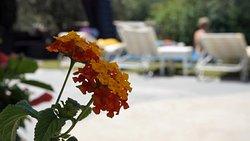 ((prime posizione Casa Mazzola + ospitalità ² ) x amicizia) = una formula vacanza super.