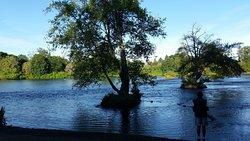 Delta Ponds City Park