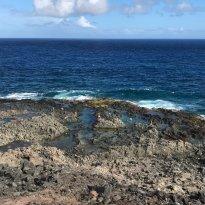 Makapu'u Point Tide Pools