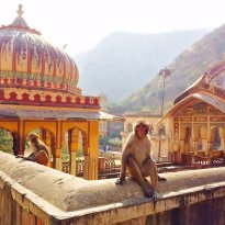 Private Tours of Jaipur