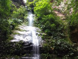 Escorrega Macaco Waterfall