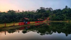 Best place to stay in Coorg