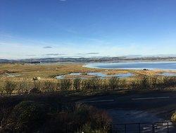 RSPB Scotland Loch Leven