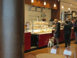 Eataly, fresh food for all - not cheap