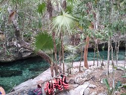 Cenotes Park Hidden Treasures