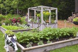 Le Jardin de Francois