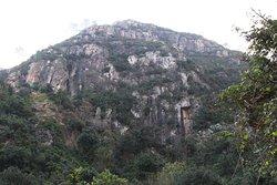 Cova del Bolomor