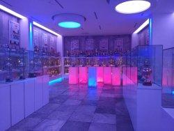 Trabzonspor Samil Ekinci Museum