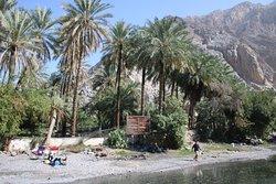 Al Thowarah Hot Springs